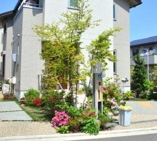 植栽計画とシンボルツリーの選び方
