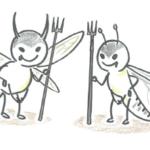 セキスイハイムのシロアリ防蟻工事と保証&費用はいくら?